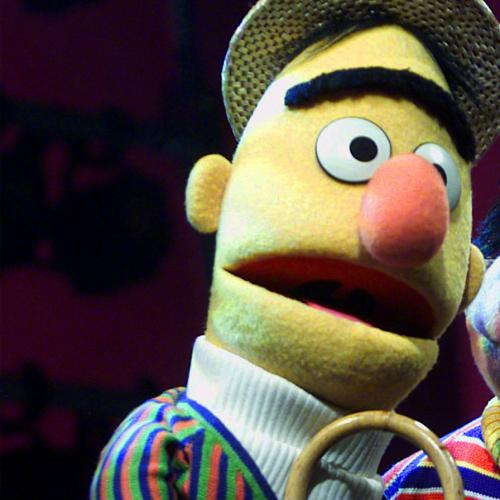 We Now Know The Facts - Are Bert And Ernie Gay?