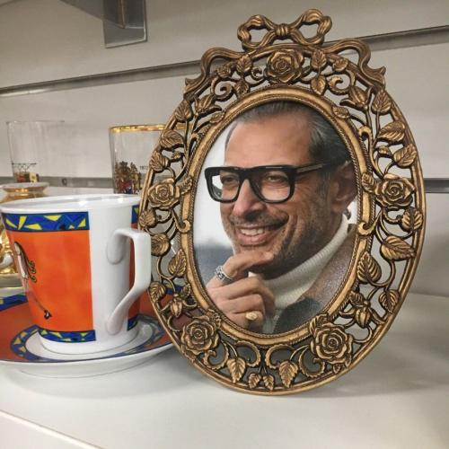 Jeff Goldblum's Face Put In Every Frame At Op Shop