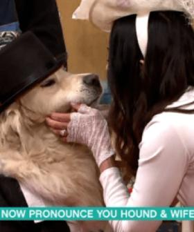 A Woman Married Dog On Live TV And The Internet Lost Its Mind