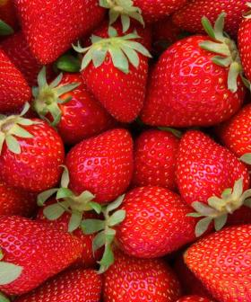 Nail Found In Punnet Of Strawberries In Adelaide's North