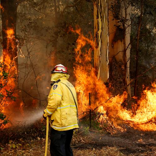 Catastrophic Bushfire Risk Threatening SA