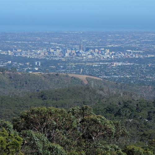 Parking At Mt Lofty Might Soon Stop Being Such A Headache