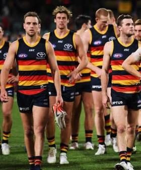 Adelaide Crows Under Investigation By AFL, Police Informed