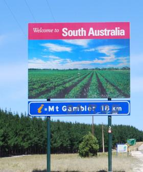 """Opening Borders With NSW Is Not """"That Far Off"""" Says Steven Marshall"""