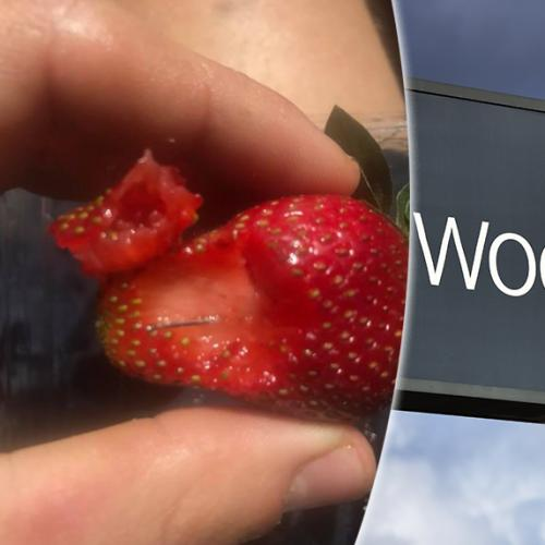 Needles And Thumb Tacks Found In Strawberries, Avocado And Bread At Adelaide Supermarket