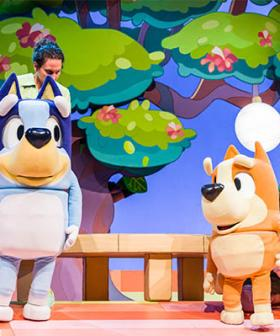 'Tap Your Foot And Hum' - Bluey Stage Show Says No Singing Allowed Kids