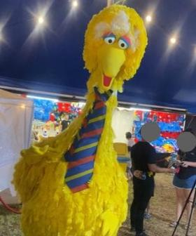 Big Bird Has Been STOLEN From The Adelaide Circus!